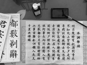 台湾(台南)成功大学の授業について