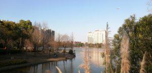 【中国生活徒然日記】家から距離3分にある公園への旅 「银翔湖公园」